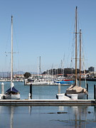 Sail Boats Prints - Sail Boats At The San Francisco Marina - 5D18173 Print by Wingsdomain Art and Photography