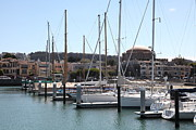 Catamaran Prints - Sail Boats At The San Francisco Marina - 5D18190 Print by Wingsdomain Art and Photography