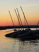 Sunset Photos - Sail Boats in the Sunset by Sarah Egan