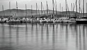Lake Pend Oreille Prints - Sail Boats Print by Leland Howard