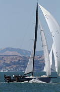 Sail Boats Prints - Sail Boats on The San Francisco Bay - 7D18344 Print by Wingsdomain Art and Photography