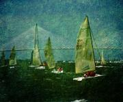 South Carolina Photos - Sail Boats by Susanne Van Hulst