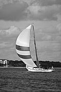 Sailing Boat Originals - Sail Power by Dustin K Ryan