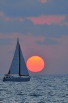 Sail Boats Prints - Sailboat at sunset  Print by Shay Levy