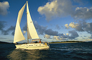British Virgin Islands Prints - Sailboat Cruising Off The Coast Print by Skip Brown
