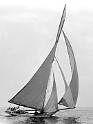 Padre Art Photos - Sailboat Hawk 1891 by Padre Art