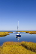 Massachusettes Prints - Sailboat in Salt Marsh Print by John Greim
