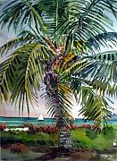 Keys Paintings - Sailboat in the Keys by Donald Maier