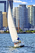 Sailboats Framed Prints - Sailboat in Toronto harbor Framed Print by Elena Elisseeva