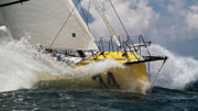 Yacht Photo Originals - Sailboat Le Pingouin Open 60 Charging  by Dustin K Ryan