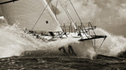Black-and-white Prints - Sailboat Le Pingouin Open 60 Sepia Print by Dustin K Ryan