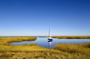 Salt Marsh Photos - Sailboat on Cape Cod Bay by John Greim