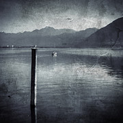 Gull Posters - Sailboat on Lake Maggiore Poster by Joana Kruse