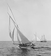 Padre Art Photos - Sailboat Papoose 1887 BW by Padre Art