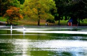 Central Park Prints - Sailboat Pond at Central Park Print by Christopher Kirby