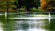 Central Park Prints - Sailboat Pond in Central Park Afternoon Print by Christopher Kirby