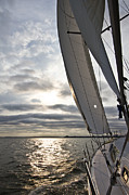 Sloop Posters - Sailboat Sailing Beneteau 49 Charleston Harbor Poster by Dustin K Ryan