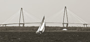 Yacht Photo Originals - Sailboat Sailing Cooper River Bridge Charleston SC by Dustin K Ryan