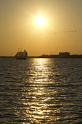 Charleston Sunset Framed Prints - Sailboat Sunset on the Charleston Harbor Framed Print by Dustin K Ryan
