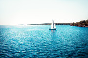 Kingston Prints - Sailboat Print by Thousand Word Images by Dustin Abbott