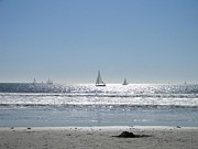 Eric Barich - Sailboats at Venice Beach