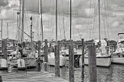 Shawn Colborn - Sailboats in Manteo