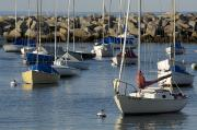 Rockport Prints - Sailboats In Rockport Harbor, Ma Print by Tim Laman