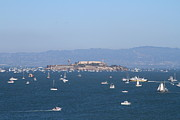 Alcatraz Prints - Sailboats In The San Francisco Bay Overlooking Alcatraz . 7D7862 Print by Wingsdomain Art and Photography