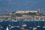 Alcatraz Photos - Sailboats In The San Francisco Bay Overlooking Alcatraz . 7D8080 by Wingsdomain Art and Photography