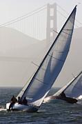 Sailboats Race On San Francisco Bay Print by Skip Brown
