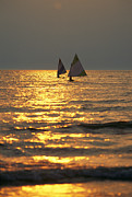 Boating Lake Photos - Sailboats Travel Across The Golden by Skip Brown