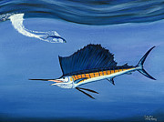 Sport Fishing Paintings - Sailfish - Just dropped in for lunch by Ralph Martens