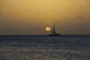 David Letts Metal Prints - Sailing at Sunset in the Caribbean Metal Print by David Letts