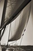 Sepia Acrylic Prints - Sailing Beneteau 49 Sloop by Dustin K Ryan