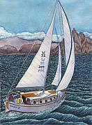 Sea Of Cortez Paintings - Sailing by Catherine G McElroy