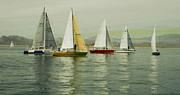 Sail Photographs Prints - Sailing Day Regatta Print by Julie Lueders