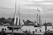 Tall Ships Photo Framed Prints - Sailing from Gloucester in black and white Framed Print by Suzanne Gaff
