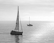 Black And White Posters - Sailing in Calm Waters Poster by Author and Photographer Laura Wrede