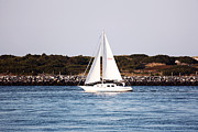 Sailboat Images Metal Prints - Sailing Metal Print by John Rizzuto