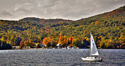 Fir Trees Photos - Sailing Lake George by David Patterson