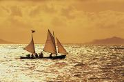 Sailor Prints - Sailing On Golden Water Print by Dana Edmunds - Printscapes