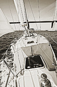 Charters Photos - Sailing Sailboat Charleston SC Bridge by Dustin K Ryan