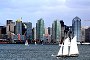 Point Loma Digital Art Prints - Sailing San Diego Print by RJ Aguilar