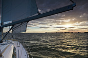 Charleston Sunset Framed Prints - Sailing Sunset on the Charleston Harbor Framed Print by Dustin K Ryan