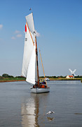 Waterpump Posters - Sailing the Yare Poster by Paul Cowan