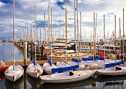 Sailboats Docked Posters - Sailoats Docked in Marina Poster by David Buffington
