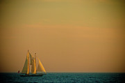Boats Photos - Sails by Sebastian Musial