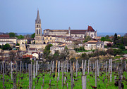 Merlot Photos - Saint-Emilion 2 by Rod Jones