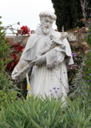 Francis Photo Framed Prints - Saint Francis Statue in Carmel Mission Garden Framed Print by Carol Groenen
