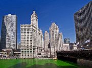Water St Chicago Photos - Saint Patricks Day by Dejan Jovanovic